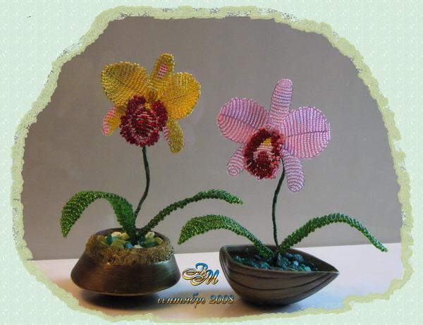 цветы из бисера схемы орхидеи.
